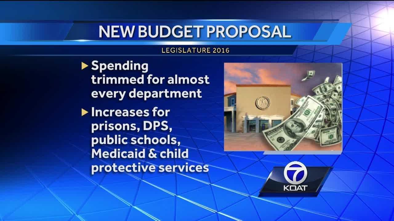 LGX budget proposal