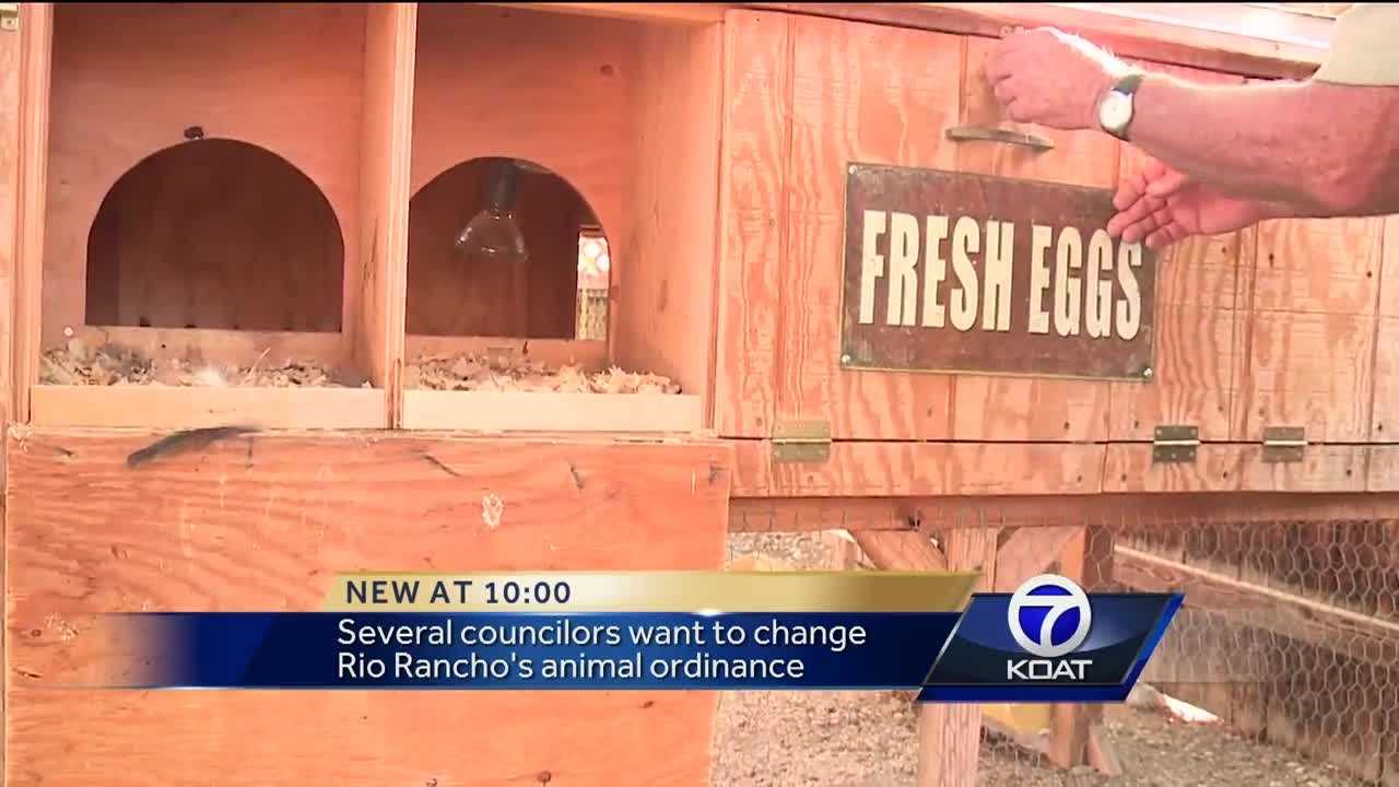No movement on Rio Rancho chicken and goat ordinance
