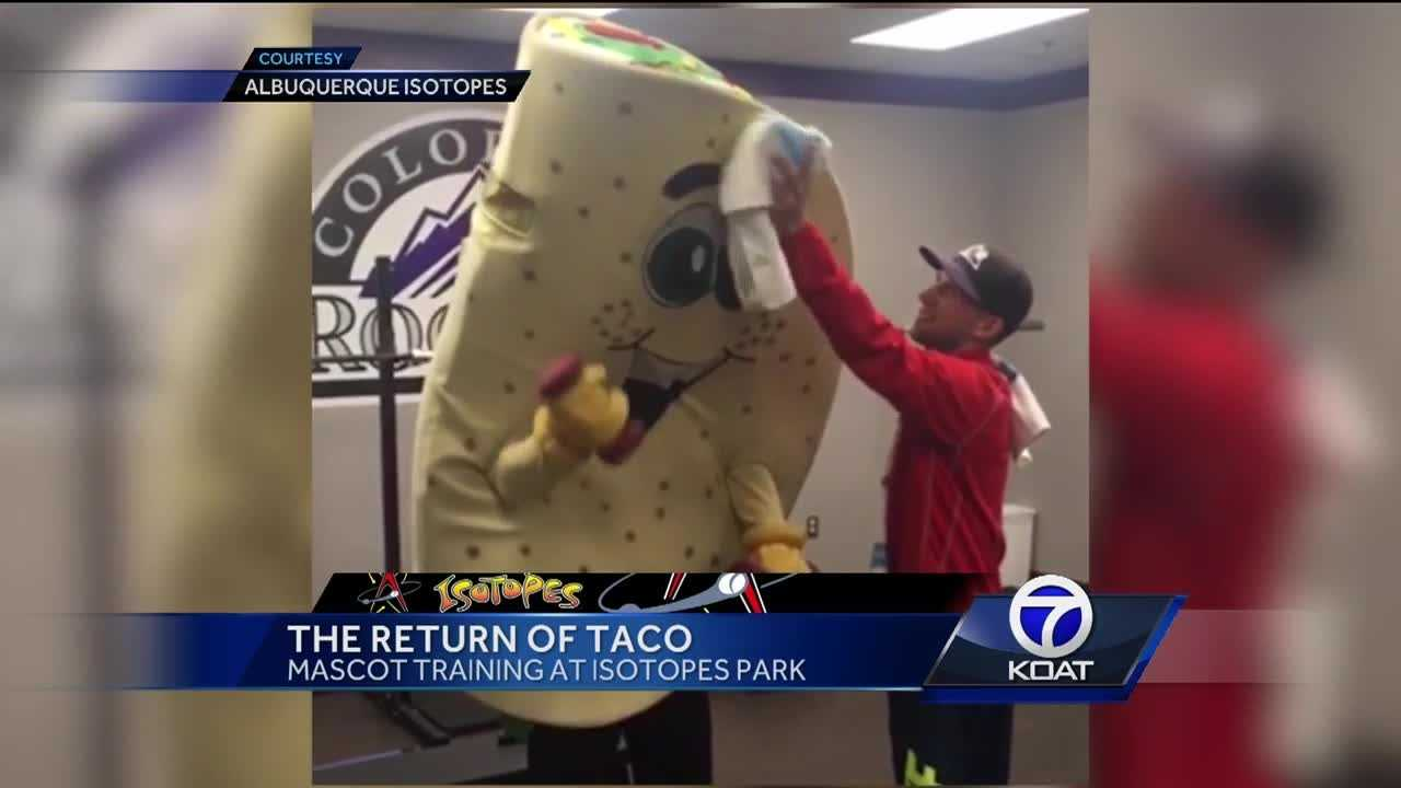 The fan favorite has been spotted training at Isotopes park, this comes after Taco has been missing at the mascot races this season.