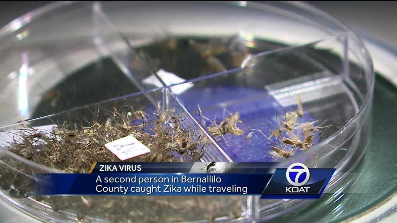 Second confirmed case of Zika in New Mexico