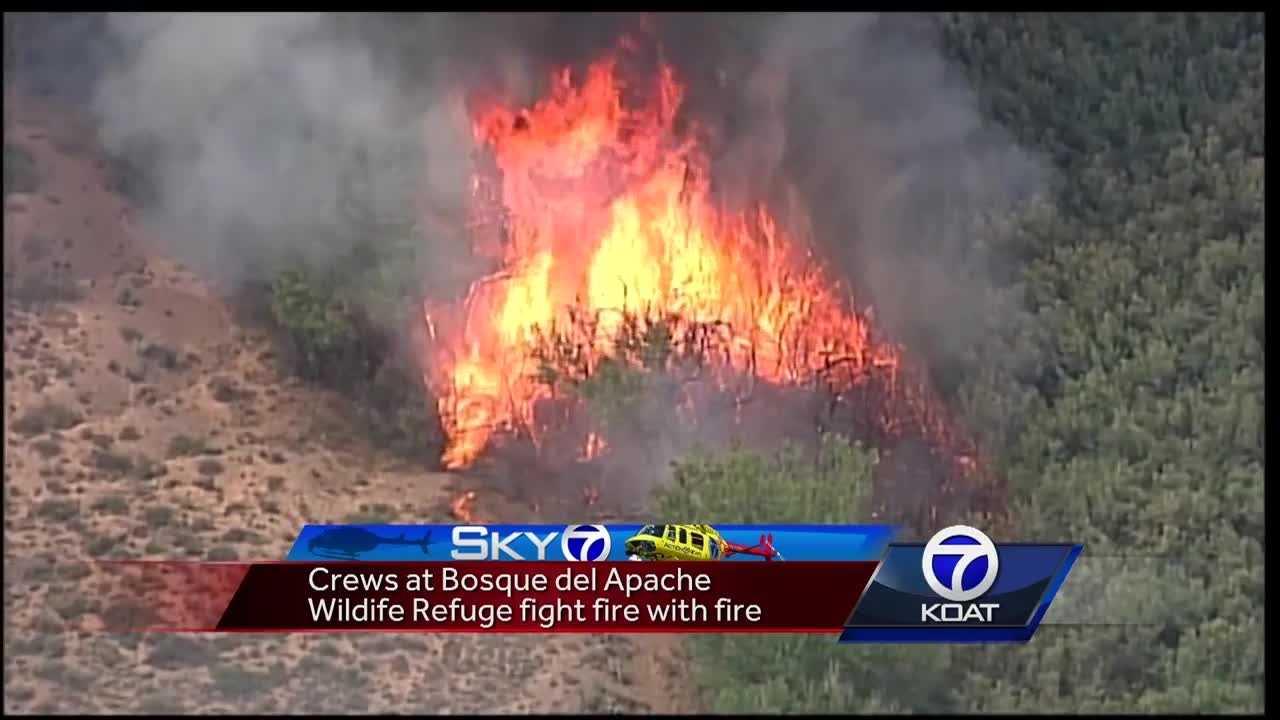 Crews fight San Pasquel fire