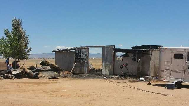 Five racehorses, one dog killed in barn fire