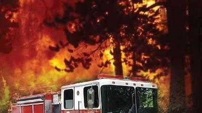 Generic Wild Fire - 13824598