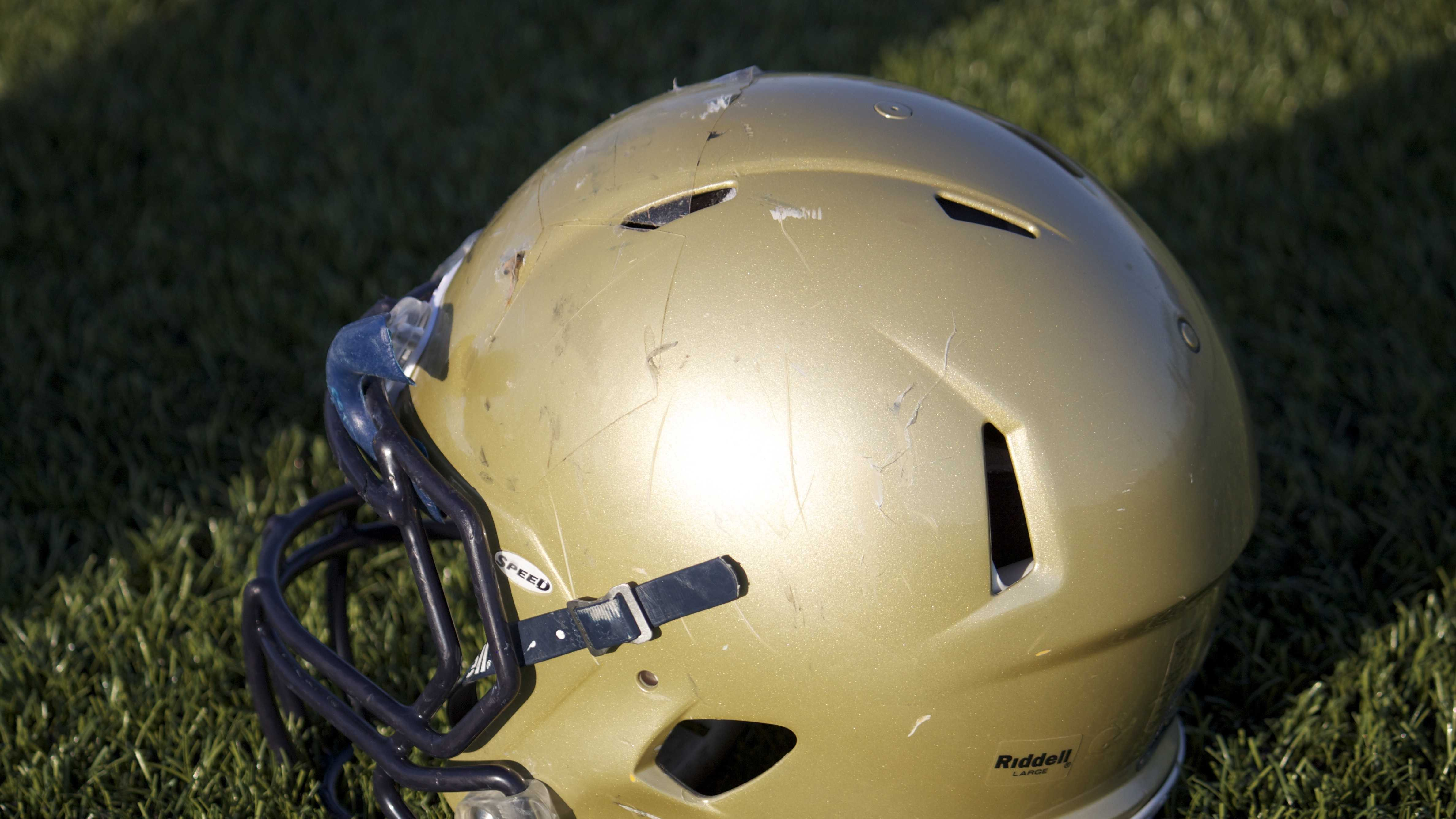 Sabercats helmet