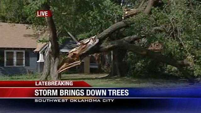 KOCO's Carla Wade reports from southwest Oklahoma City where a thunderstorm knocked over some trees on Friday afternoon.