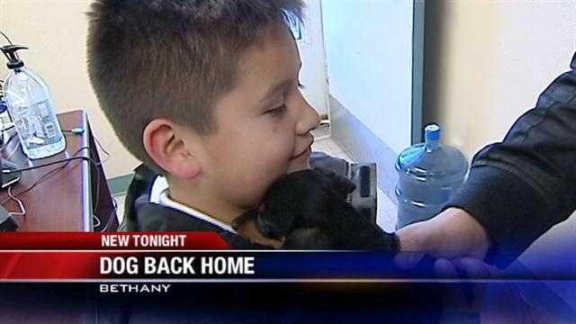 Missing dog, Bethany boy reunited