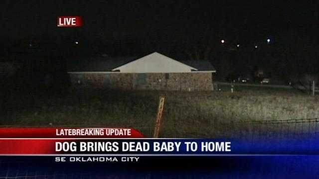 A dog found a dead baby in Oklahoma City on Saturday, and police are investigating the case as a possible homicide