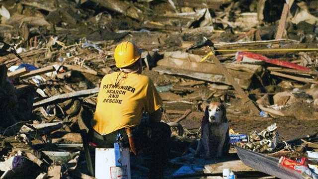 Rescue worker and dog