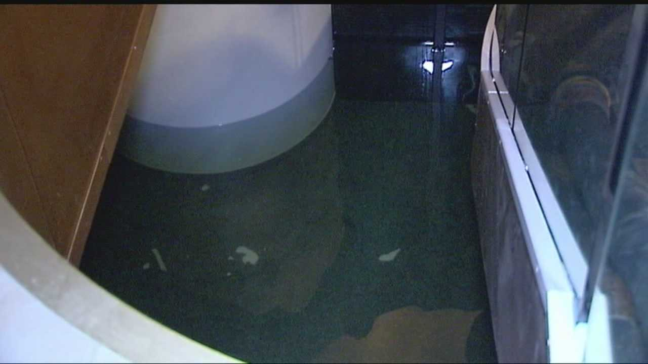 img-Broken sprinkler system floods city building