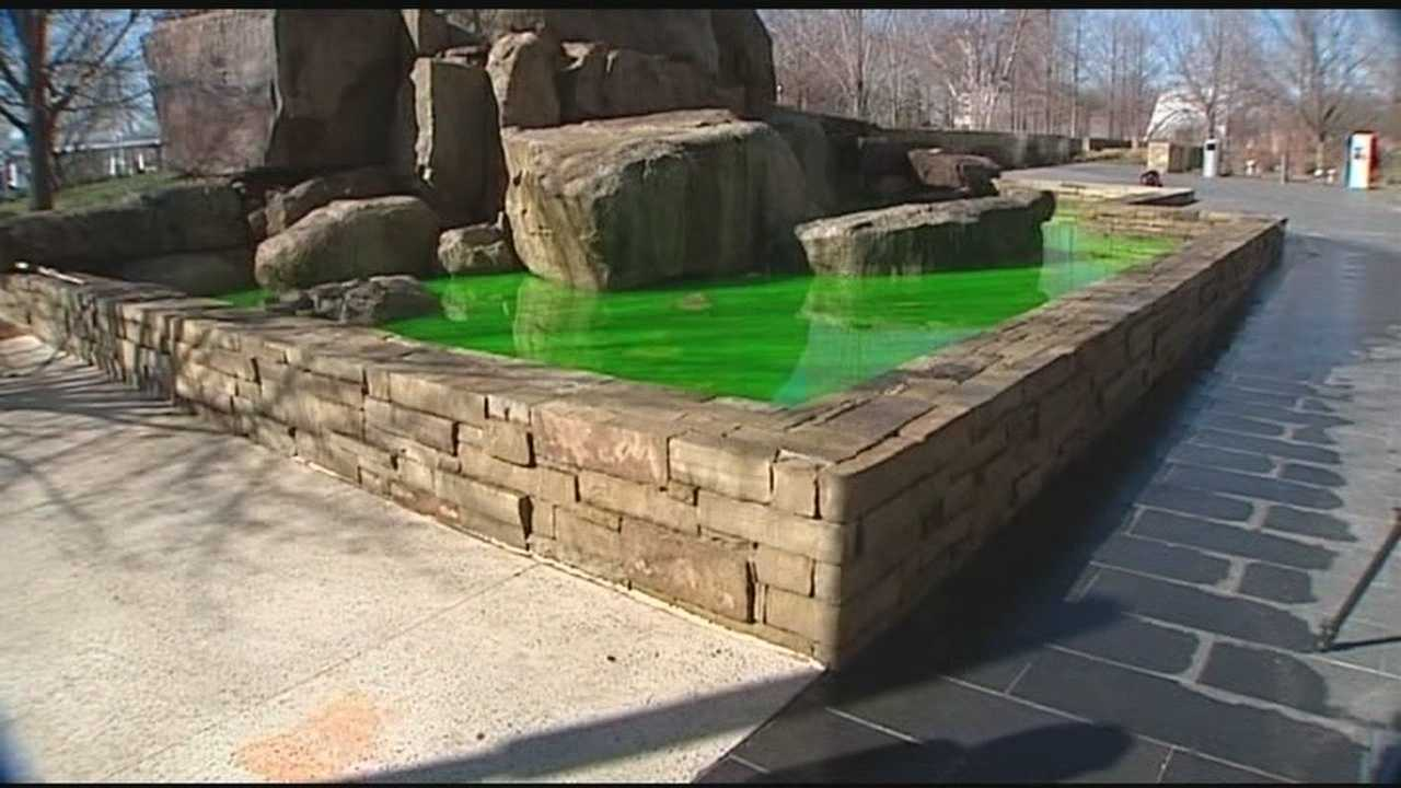 A St. Patrick's Day prank leaves the waters of Myriad Garden green.