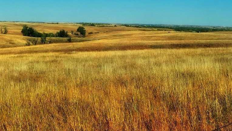 nebraska-long-2.jpg