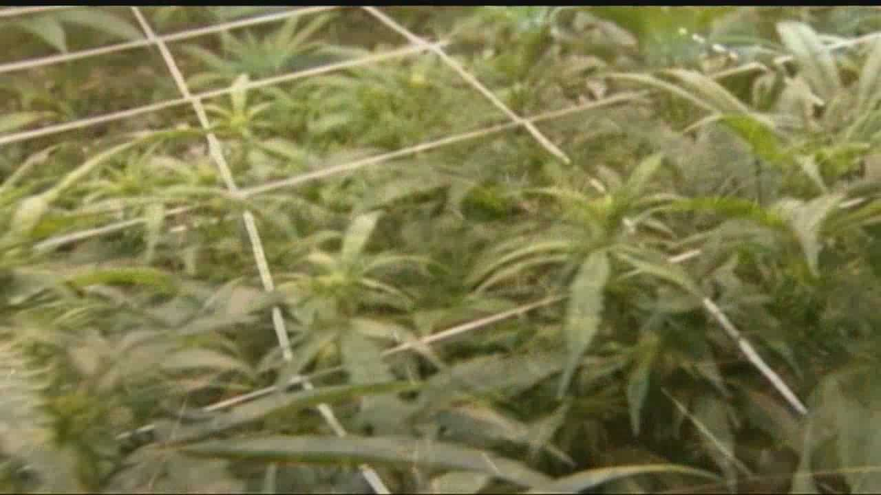 Oklahomans seek signature for a petition to legalize medical marijuana.