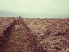 Landscape - 2nd place: © GWENN MCGILL - Portland, OR United States