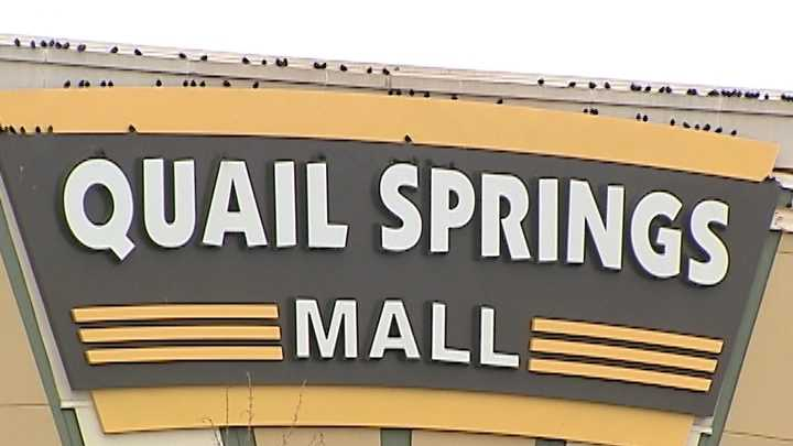 31416574-31416574.jpg?crop=1xw:0 Quail Springs Mall Map on lakeland square mall map, eastridge mall map, augusta mall map, west county mall map, oakwood mall map, providence place mall map, penn square mall map, north point mall map, montgomery mall map, towson mall map, oglethorpe mall map, rivertown mall map, orange park mall map, greenville mall map, northtown mall map, coral ridge mall map, spring hill mall map, sooner mall map, west town mall map, ocean county mall map,