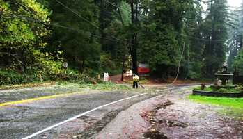 Trees toppled over Highway 9 and ripped down power lines in Ben Lomond. (Nov. 30, 2012)