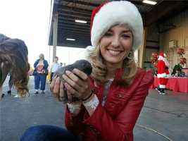 KSBW Anchor Brittany Nielsen holds this adorable baby bunny while collecting donations at California Giant Berry Farms Cooling at 335 Industrial Road in Watsonville.