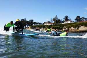Operation Surf 2013