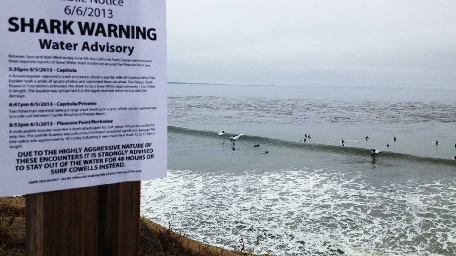 """This """"Shark Warning"""" sign was posted early Thursday morning. Surfers still surfed."""