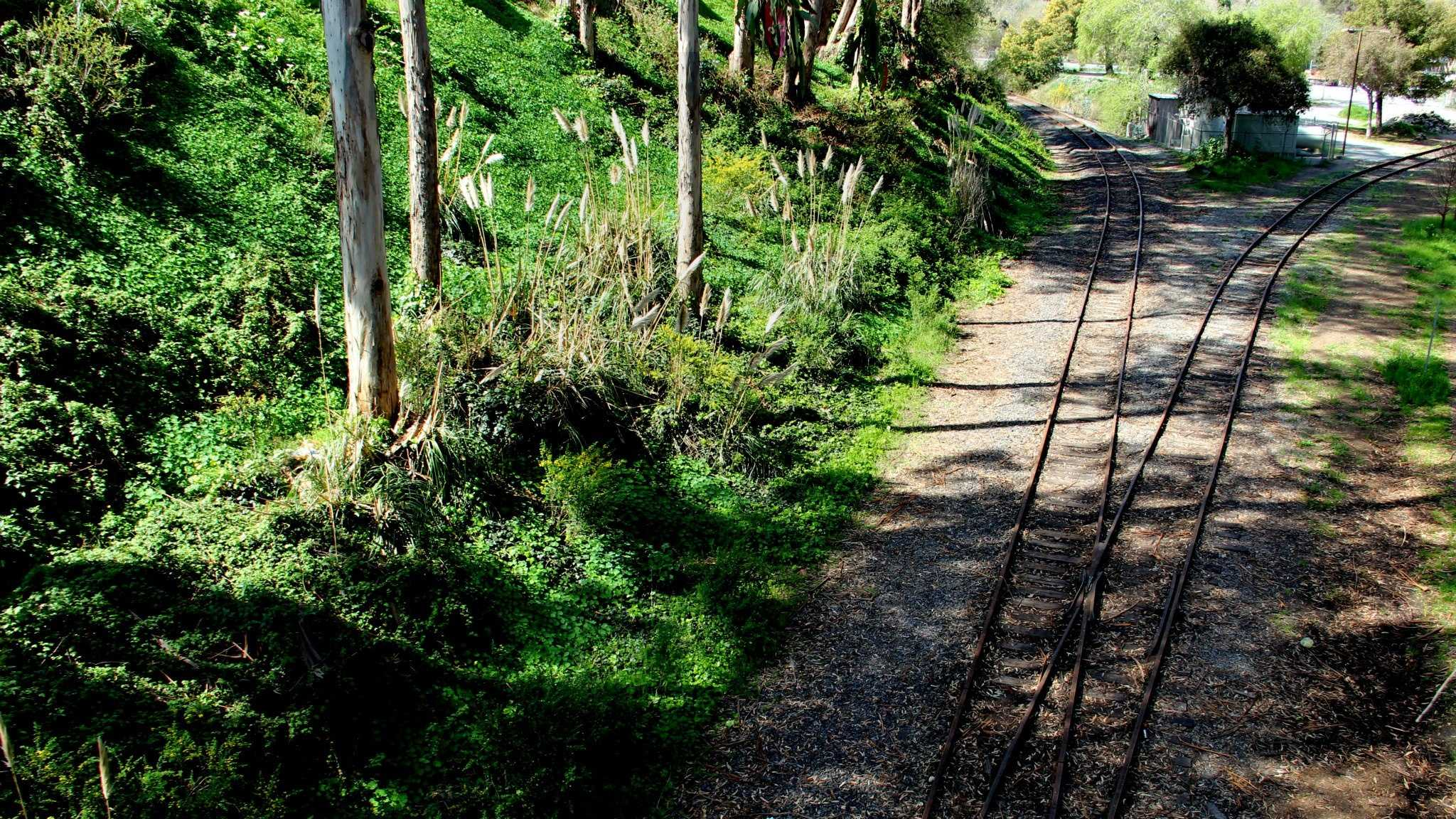 Charles Powers was stoned and killed with a skateboard along these train tracks in Santa Cruz.