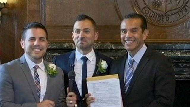 GAY MARRIAGES RESUME