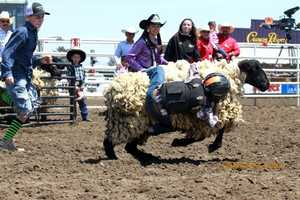 Mutton busting!  (Photo by Sandra Levine)