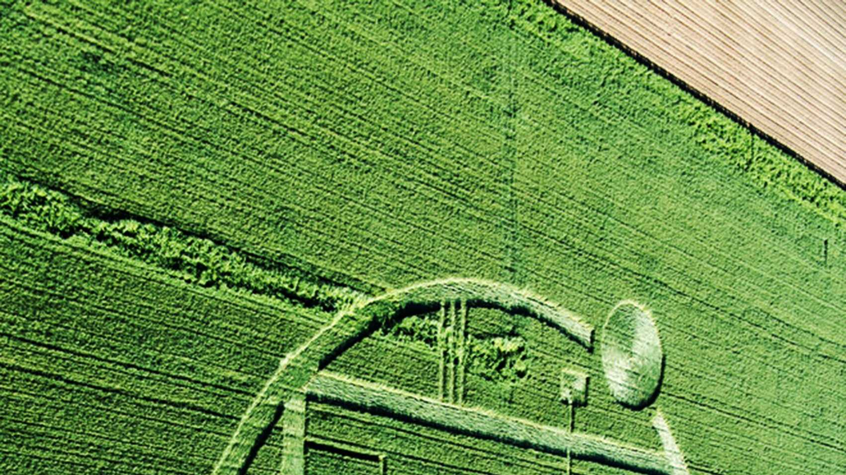 This image of the Chualar crop circle has been rotated 90 degrees to show a braille inscription at the correct position.