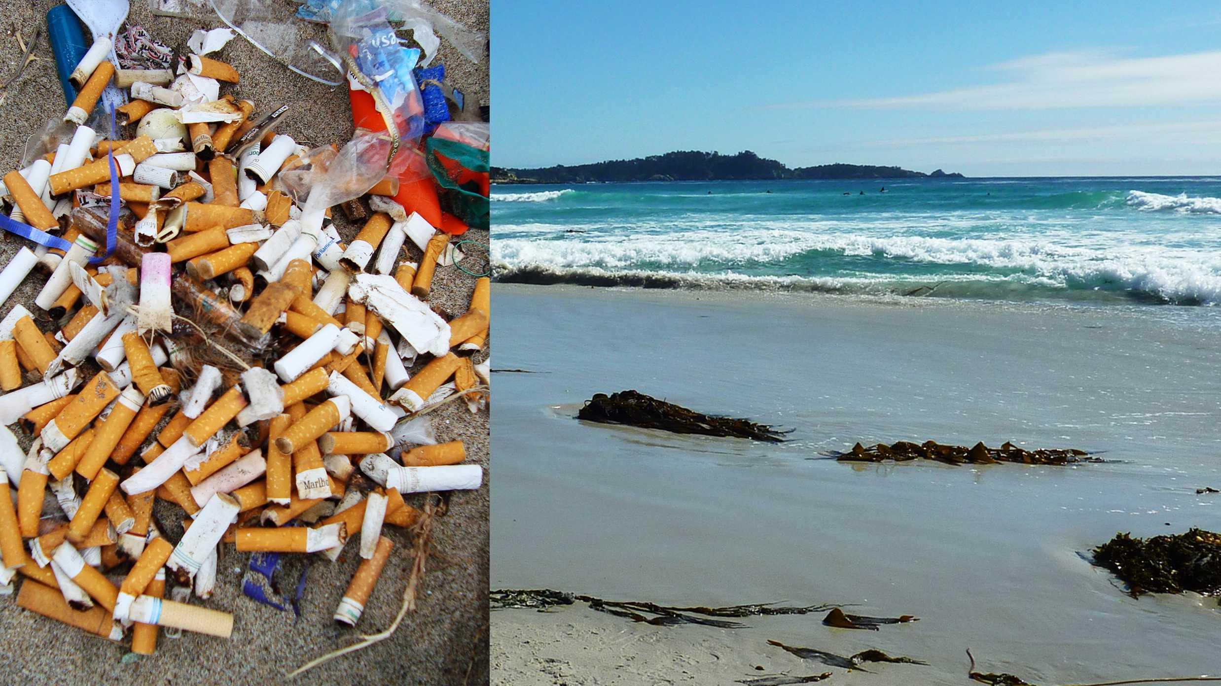 cigarette beaches.jpg