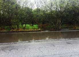 Puddles form on Moss Landing Road in Moss Landing. (Feb. 28, 2014)