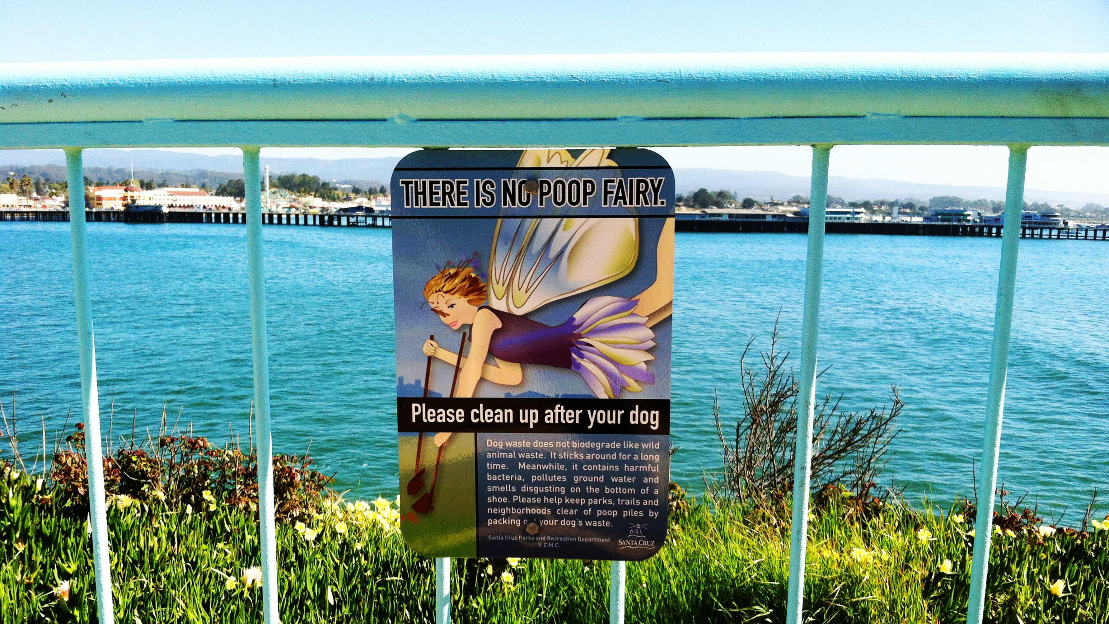 The Poop Fairy is seen on West Cliff Drive in Santa Cruz.
