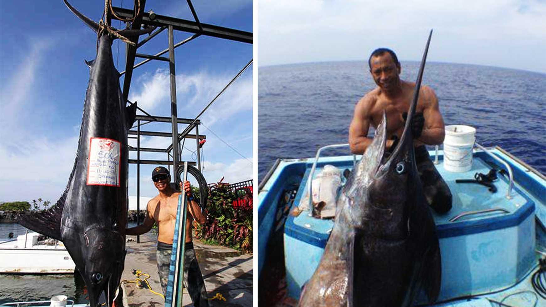 hawaii marlin big fish.jpg