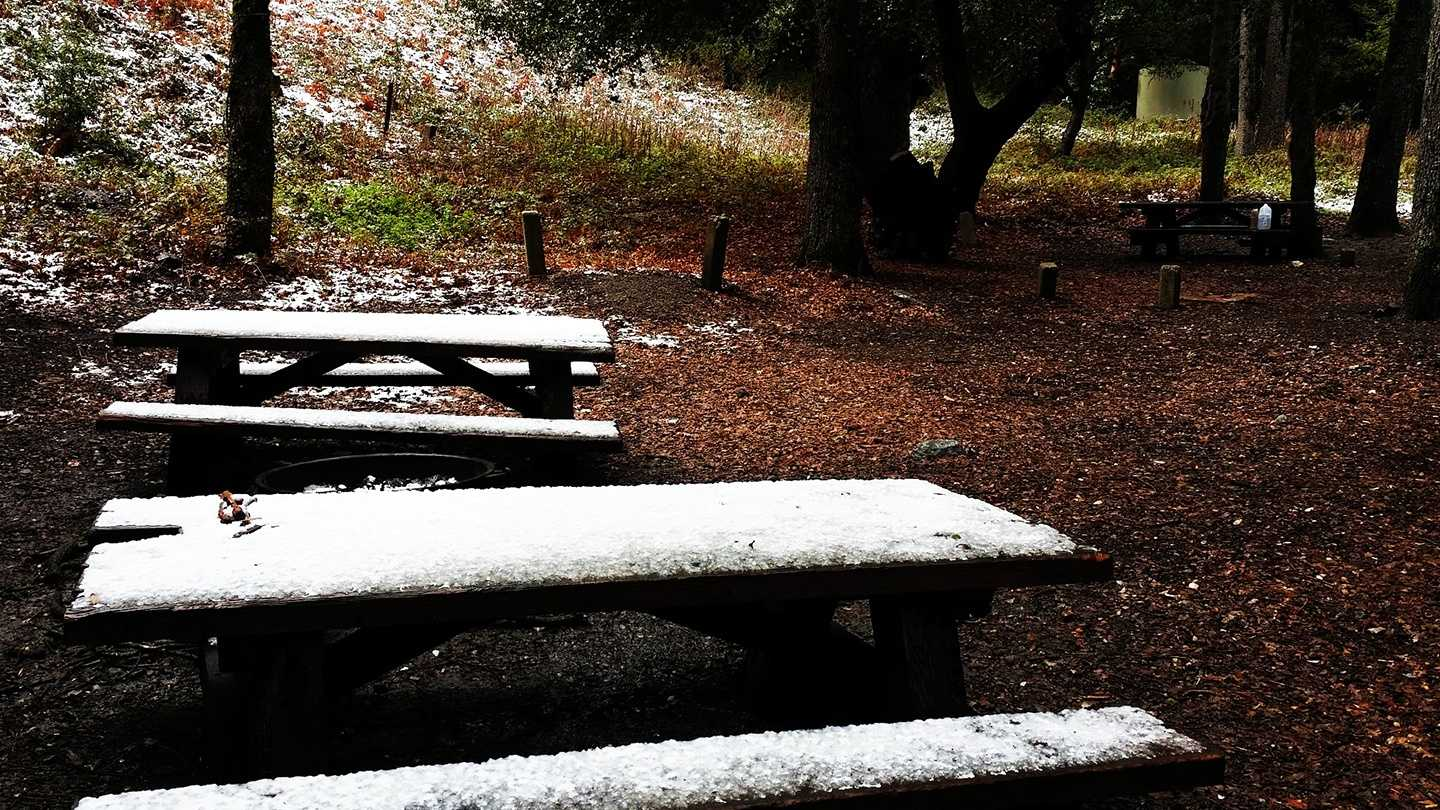 Snow lightly dusted Los Padres National Forest along Tassajara Road Tuesday. (April 1, 2014)