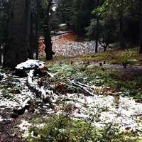 Snow lightly dusted Los Padres National Forest alongTassajara Road Tuesday. (April 1, 2014)
