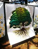 """Superintendent Steve Betando said Live Oak High students were allowed to wear whatever flag they wanted to class. Many students, however, opted instead to wear a T-shirt with a green and gold Oak tree drawing on it to participate in """"Green and Gold Day."""""""
