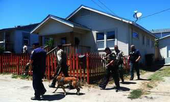 Investigators are seen here searching door-to-door several houses down from where a standoff happened on Deer Place. (May 27, 2014)