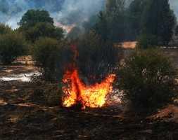 A 5,000-acre fire burned across Fort Hunter Liggett. (June 20, 2014)