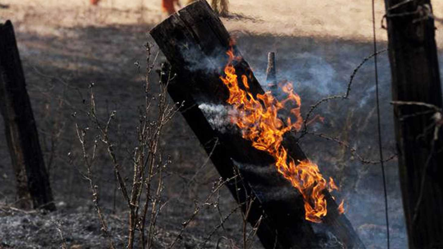calfire.jpg