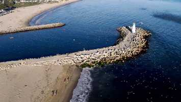Drone videographer Archer Koch captured dazzling footage of thousands of shearwater birds and sea lions diving after the anchovies when the fish were still alive Wednesday afternoon.