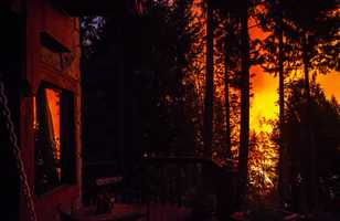 More than 76,000 acres of forests have burned.