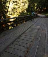 Margaret's Bridge over Aptos Creek is one of several bridges on the trail.