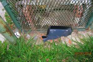 Police found this side mirror at the scene.