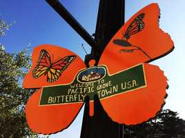 Wooden butterfly canvases were assembled by Amy and Scott Goodrich of Butterfly Gift Shop, and donated to artists for free to paint.