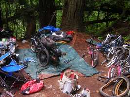 In response to numerous complaints about illegal camping by homeless people and trash dumping, Santa Cruz police teamed up with the Parks and Recreation Department for a massive cleanup of Sycamore Grove. The team cleared out 3.5 tons of trash in two days.