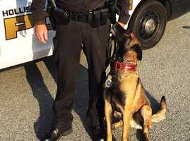The Hollister Police Department's newest crime fighter can sniff out clues and make a running suspect freeze. Freeze is a 4-year-old Belgian Malinois and highly trained K9.