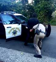 Later that day, the CHP received a tip from the public that Maddy was sitting on a park bench on Creek Drive in Aptos. Maddy was handcuffed and taken into custody.