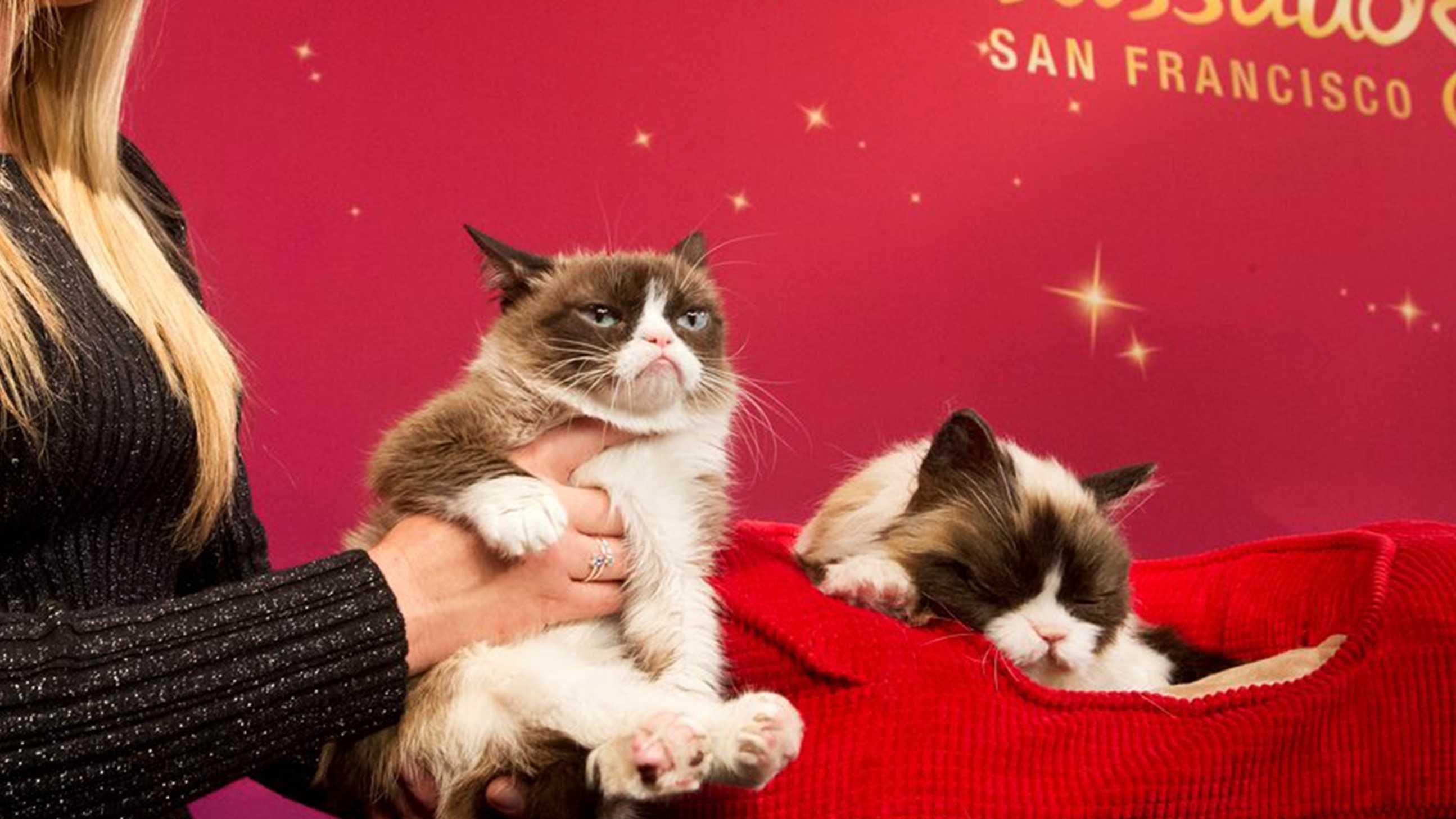 Grumpy Cat, left, poses next to an animatronic figure at Madame Tussauds San Francisco.