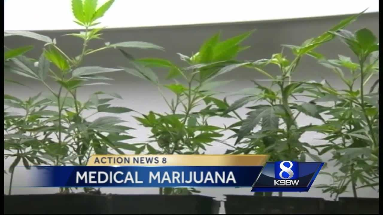Pacific Grove, Marina considering medical marijuana growing bans