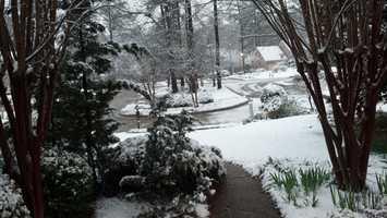 Snow in Ridgeland.