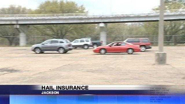 Hail Insurance
