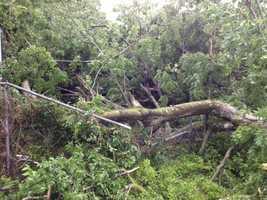 Storms rip through Vicksburg, leaving damage behind.