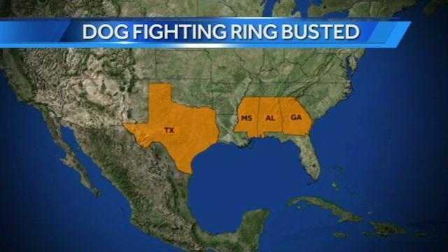 dog fighting map